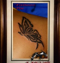 Butterfly1_big